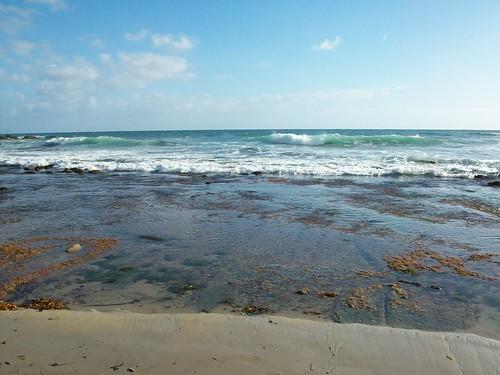 pacific ocean at laguna beach