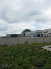 C.D. Howe Green Roof