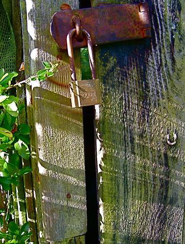padlock and shadows