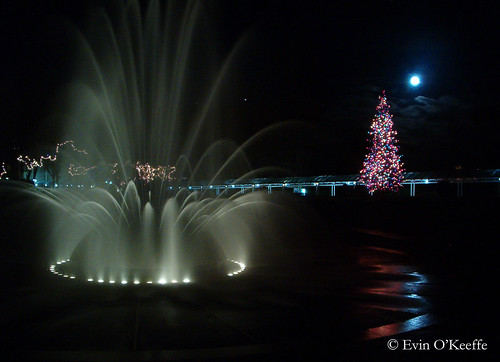 Christmas at Seattle Center
