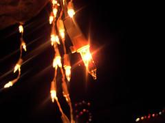Feliz Navidad y Año Nuevo 2010