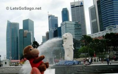 Sago in Singapore, Aug. 08, 2008
