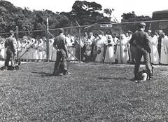 Dog Demonstration