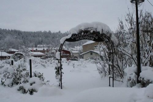 Lunchpaus i snöigt Valdemarsvik