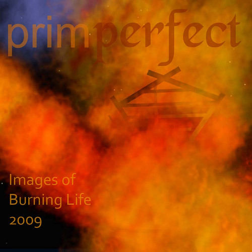 Prim Perfect's Images of Burning Life: picture by Raven Haalan