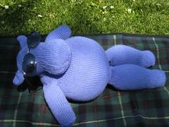 Toy_2009_06_13_HappyHippo06