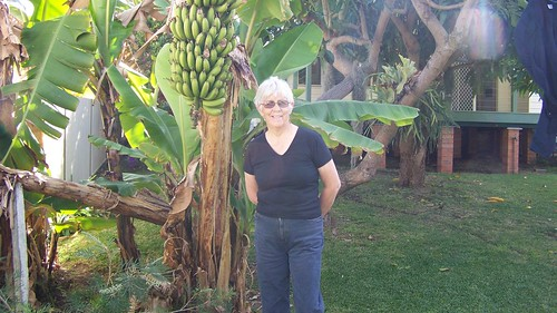 Janet and the bananas at Puddleby
