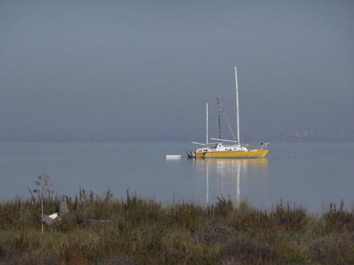 Catamarán amarillo