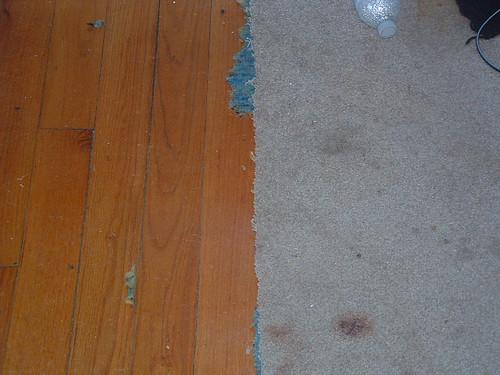 Carpet Removal 003