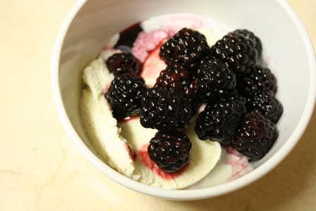 Blackberry Sauce and Ice Cream