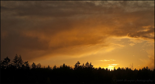 Firey Sunset ~ Project 365/315