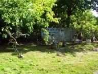 Cedar Point - Hawkins Refreshements Skeletons