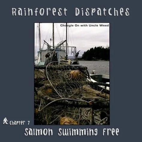 Salmon Swimming Free