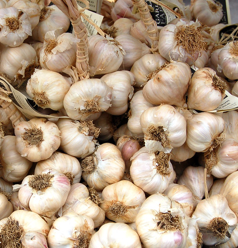 Isle of Wight garlic