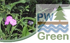 PWGreen of Port Washington NY