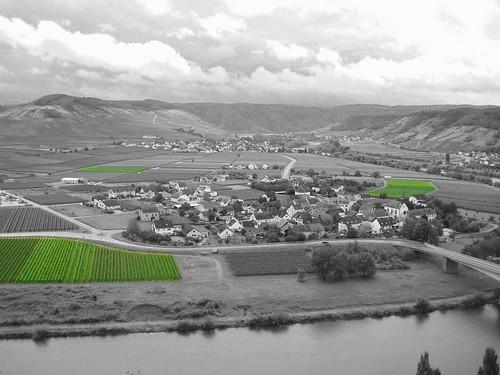Weingut KJ Thul in Thörnich 2009-08-02 025 edit