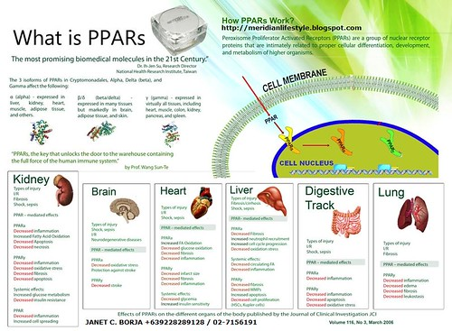 ppar-jborja +639228289128 by you.