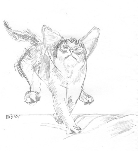 Drawing kittens, part 6