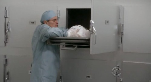 Ducky and turkey in autopsy © CBS