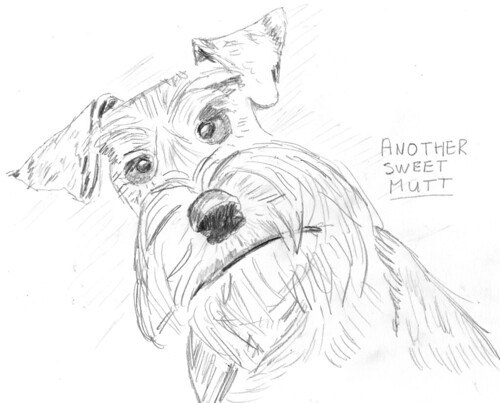 Scruffy dog, part 5