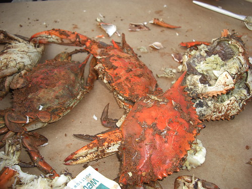 Tax Talk and Crab Feast