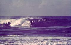 Guam Surfer