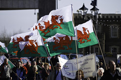 Welsh flags, Cardiff Bay, St David's Day / Ban...