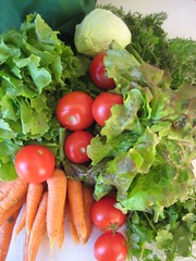 Veggiebag week 43 2009