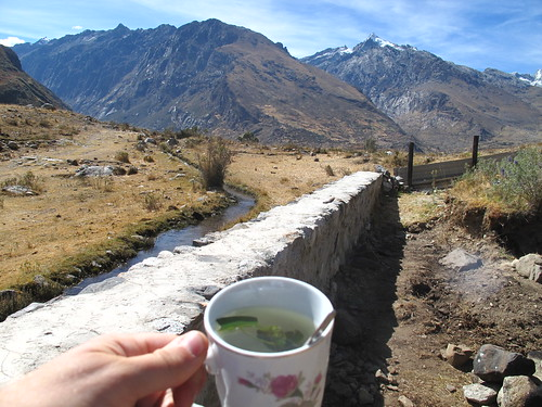 Coca tea in the mountains: perfect hiking fuel