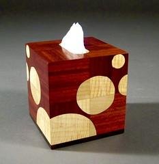 Brian Reid Tissue Box_1338
