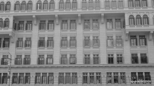 window watching
