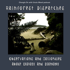 Rainforest Dispatches - A Choogle On with Uncle Weed podcast series