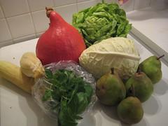 Aardvlo veggiebag week 41