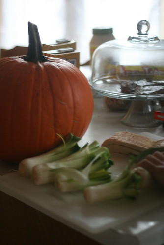 leek and pumpkin soup