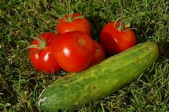 090912-salad434
