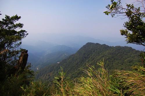 Wai Niao Zui Shan
