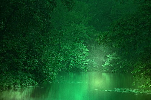 Dreams in the Key of Green