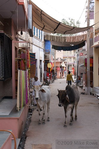 Streets of Jojawar