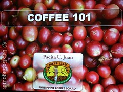 Coffee 101 from Philippine Coffee Board