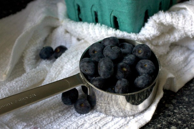south jersey blueberries