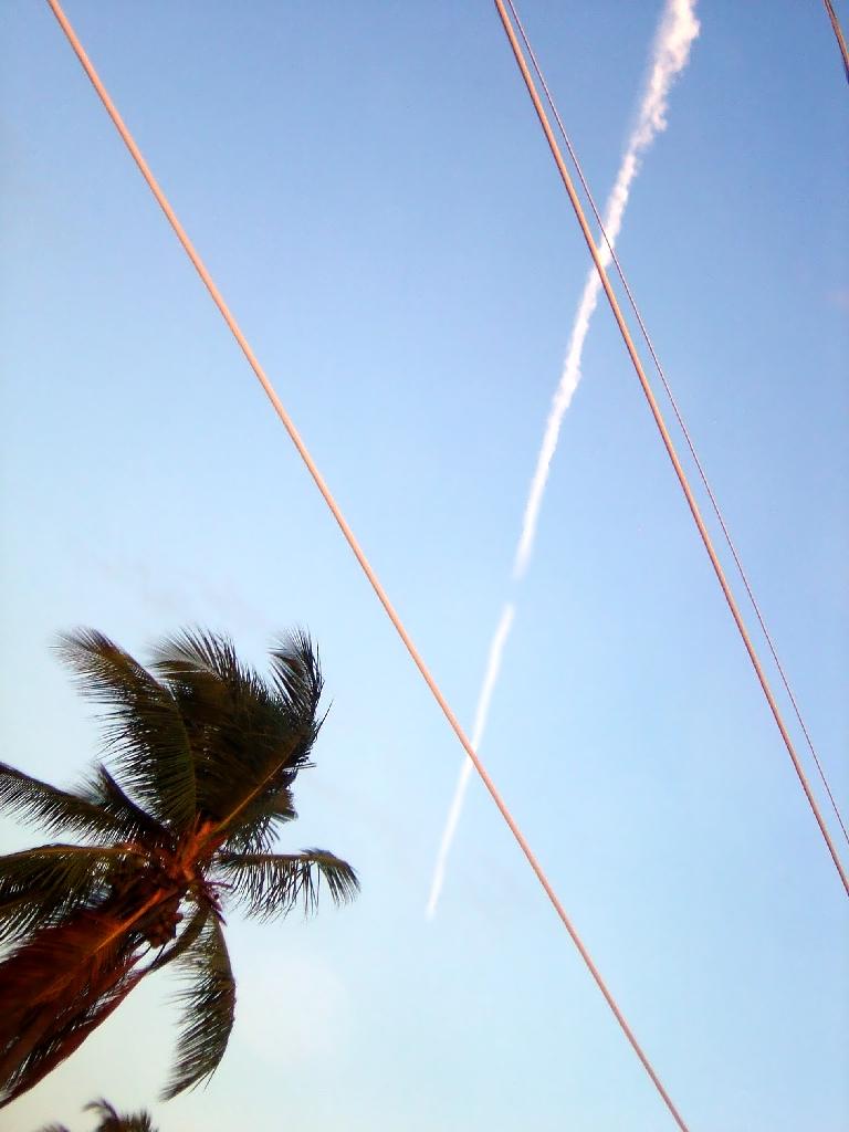 The metal birds overhead