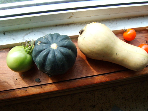 green tomato, acorn squash, other squash all home grown