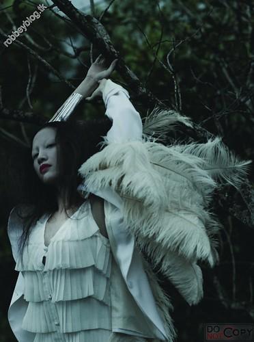 Like a bird - DMC (8)