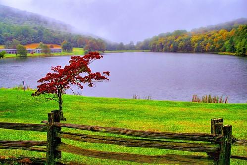A Misty Autumn Morn