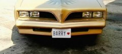 Barry Plate