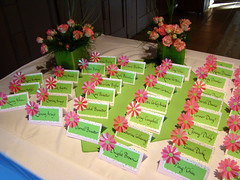 DSC00269 daisy place cards