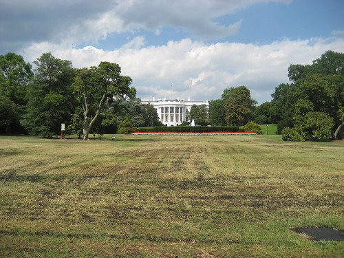 white house, brown lawn