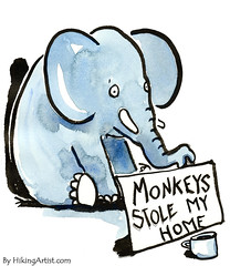 Begging elephant