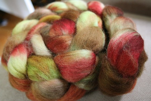 fiber: Autumn's Fire, Funky Carolina