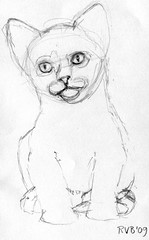 Drawing kittens, part 11